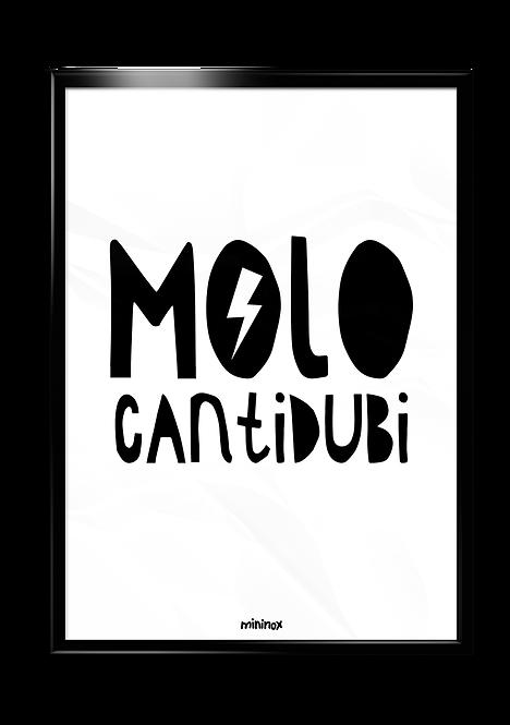 MOLO CANTIDUBI