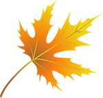 autumn-leaves-5019594_1920.png