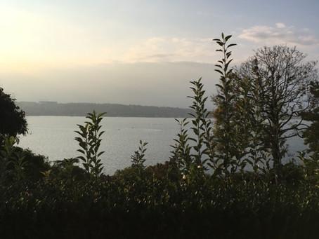 Trouver l'amour au bord du Lac Léman