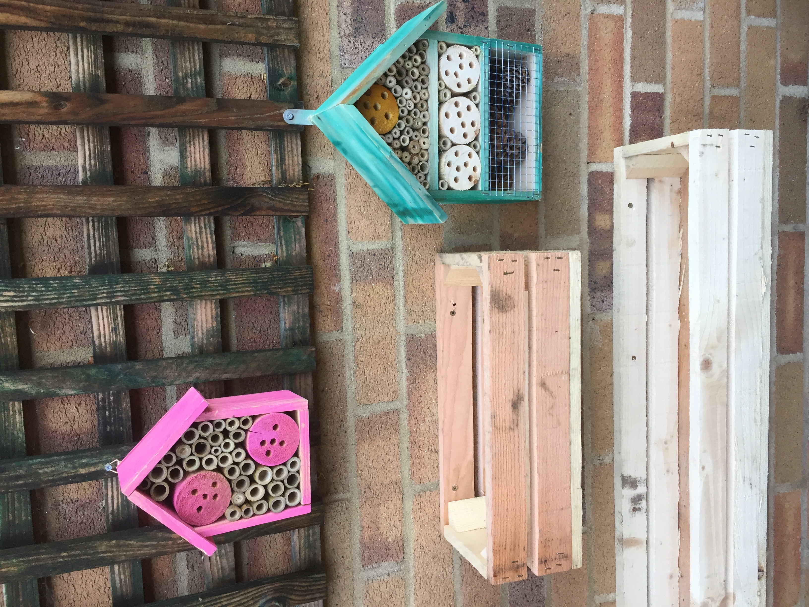 Colourful Bug Houses
