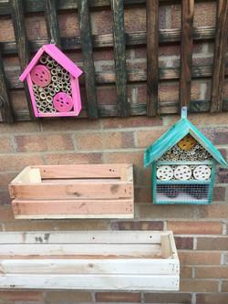 Colourful Bug Houses