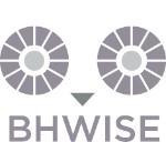 bhwise graphic