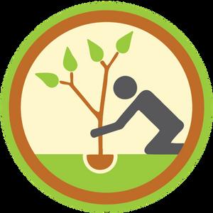 Volunteers Needed for Tree Plantings!