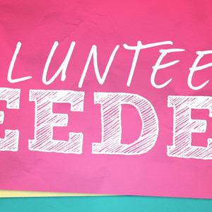Volunteer with ABAE!