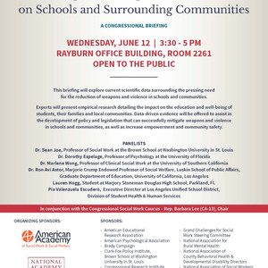 Congressional Briefing: The Impact of Weapons and Violence on Schools and Surrounding Communities