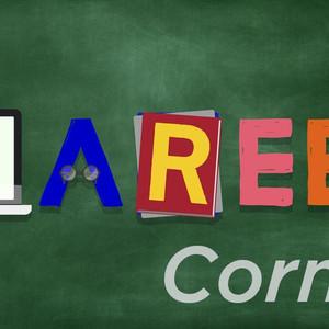 January SSW Career Corner Newsletter