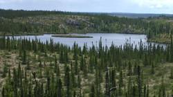 La Forêt Boréale 3