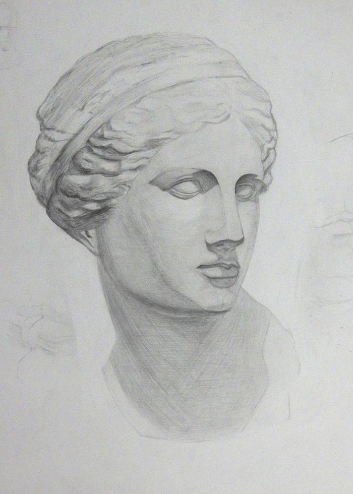 Венера академический рисунок Перспек