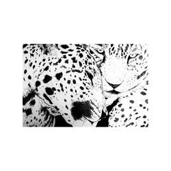 leopards_illustration_by_cricristudio