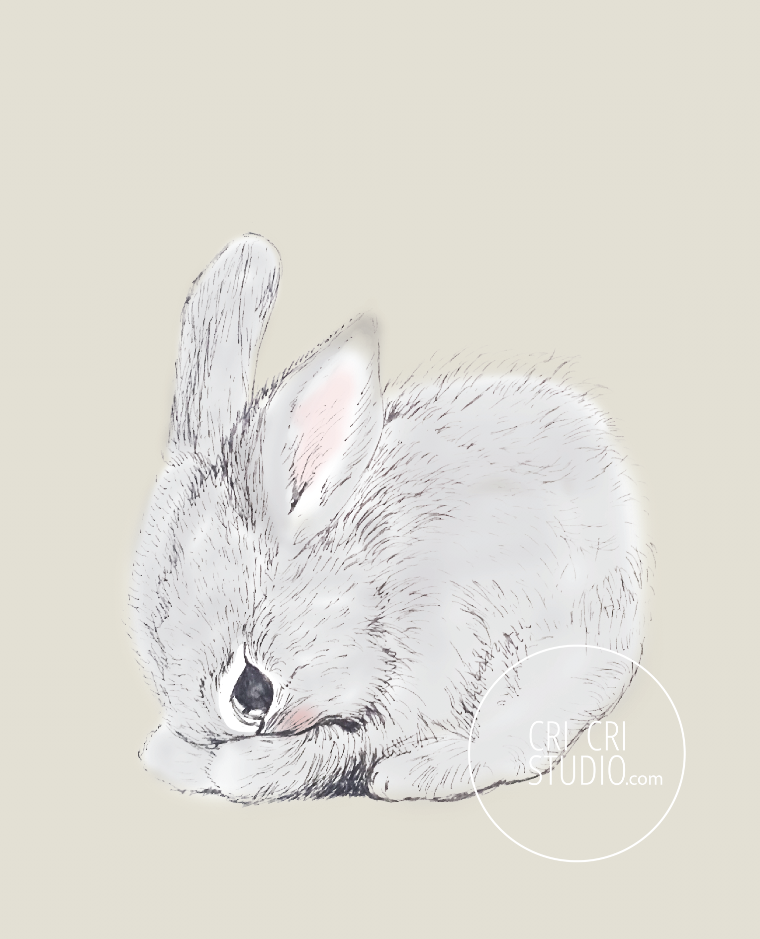 Rabbit by Cri Cri Studio