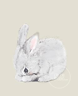 Rabbit by Cri Cri Studio