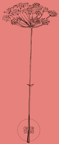 Spontaneous flower hand drawing
