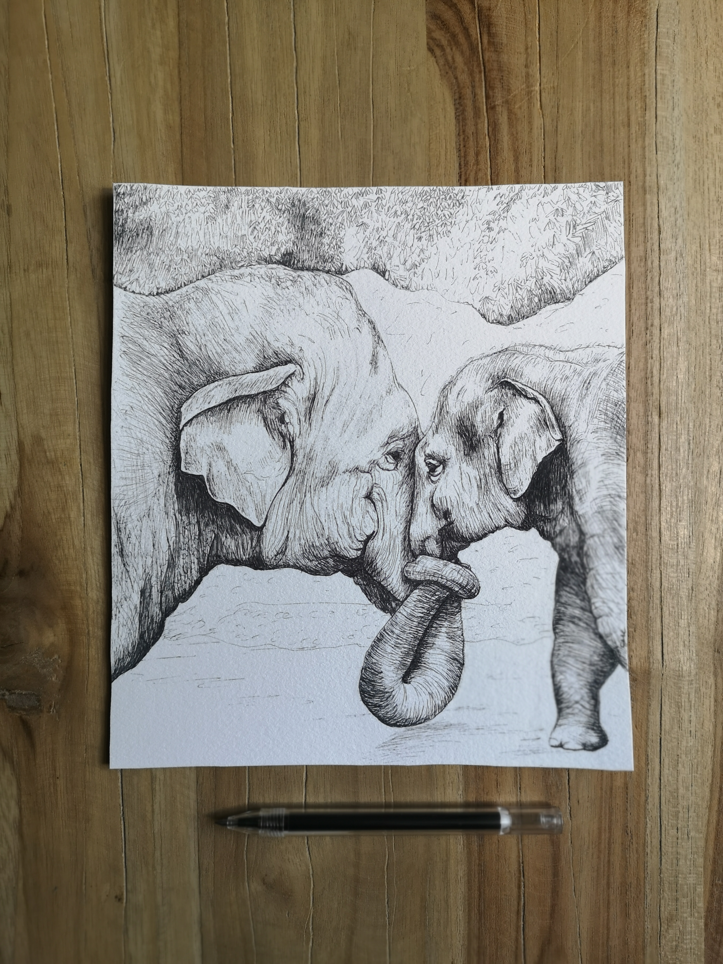 Elephants by Cri Cri Studio