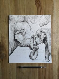 elephants_illustration_by_cricristudio