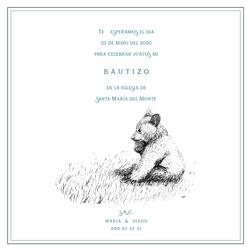 baby_bear_cri_cri_studio