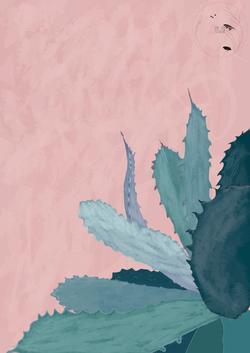 Plant_Illustration_by_cricristudio