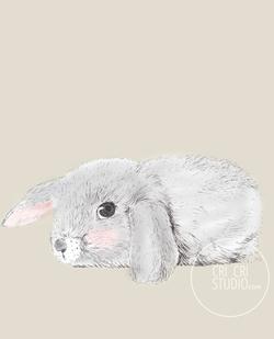Bunny by Cri Cri Studio
