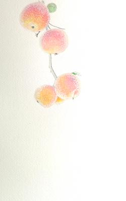 Peaches_by_cricristudio