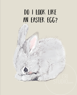 Rabbit_illustration_cricristudio