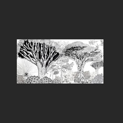 Drago forest by Cri Cri Studio