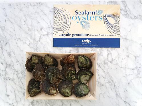 Seafarm Oesters Royale Grandeur