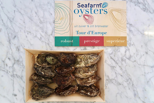 Tour d 'Europe Oesters