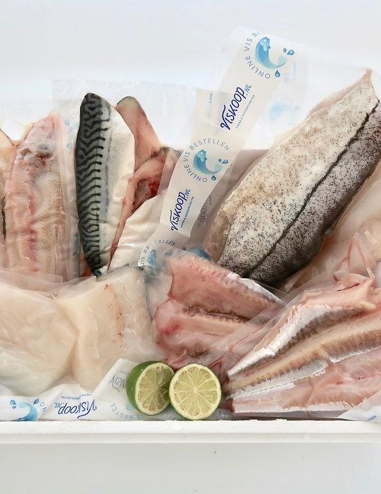 Noordzee Vis uit IJmuiden Box
