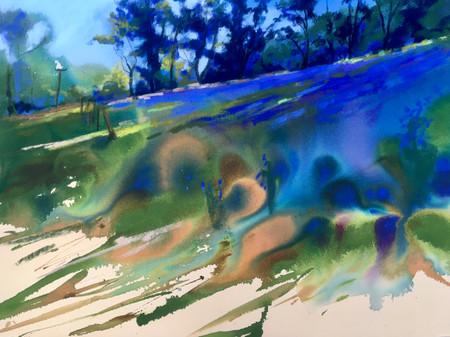 """Sea of Bluebells"""