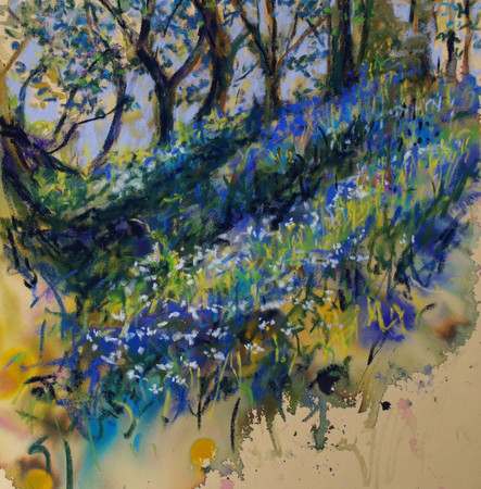 """Wild Garlic and Bluebells"""