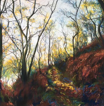 """"""" Autumn Trees"""""""