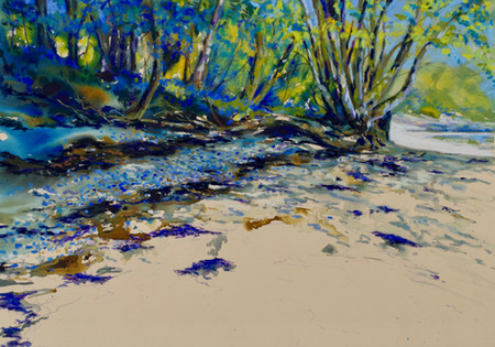 """Bluebell Beach"""