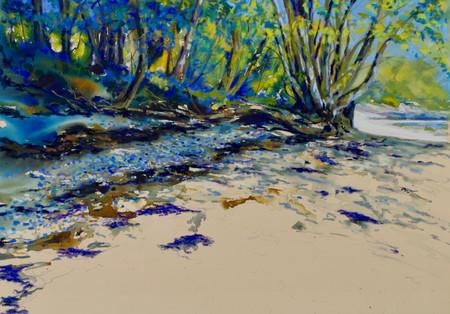 """""""Bluebell Beach"""""""