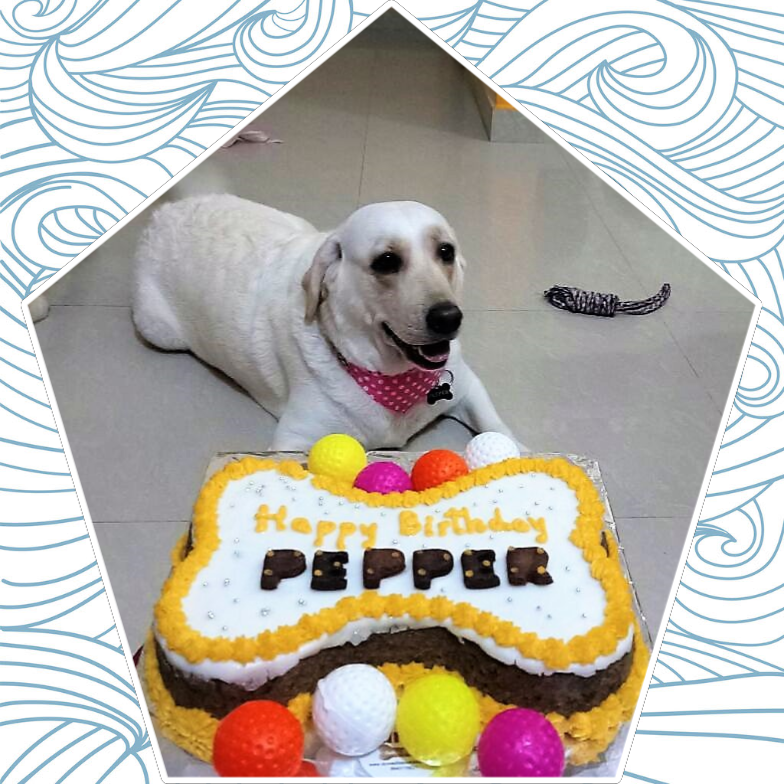 Pepper_Bday