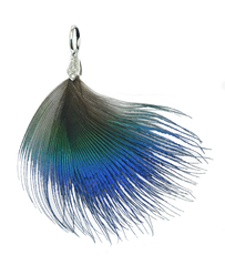 P859-DTS+PEACOCK (3).png