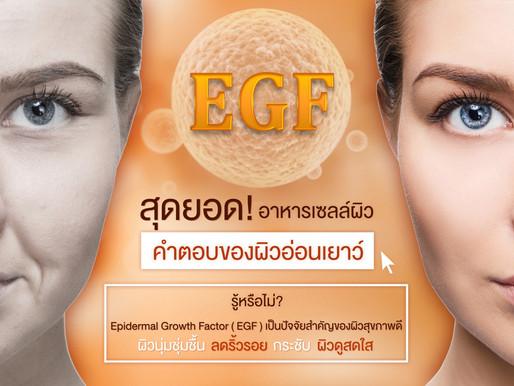 EGF สุดยอดอาหารเซลล์ผิว คำตอบของผิวอ่อนเยาว์