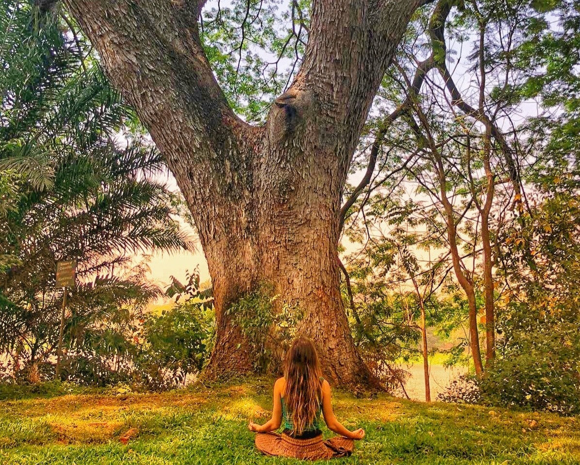Seeking Self Yoga - Wednesdays