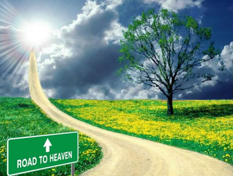 Auctions : Road to Heaven or Highway to Hell?