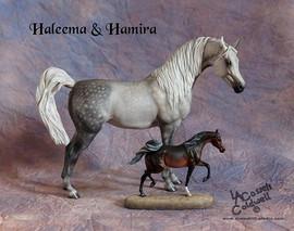 DSCF0649haleemaHamira.jpg