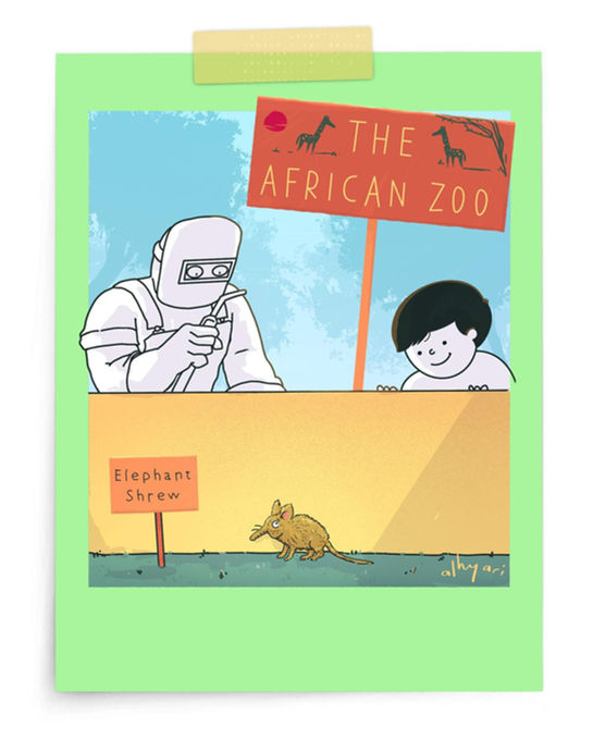 The African Zoo | Digital Cartoon for a Children's Book