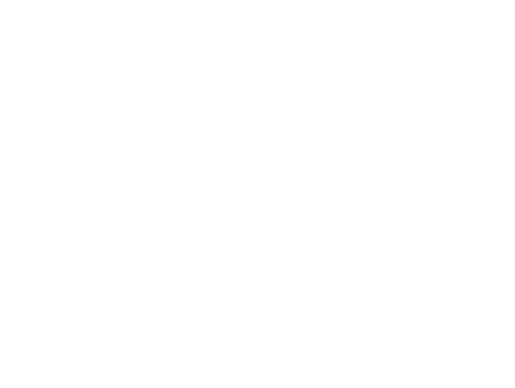 MODELO AMBAR QROO TRANS-04.png