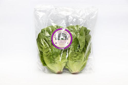 Little Gem Lettuce Twin Pack