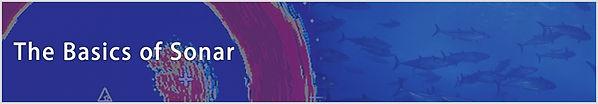 Basics of sonar.jpg