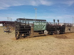 2016 Great Bend Farm & Ranch Show 5