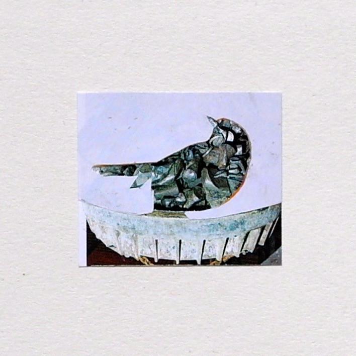 #21 Bird