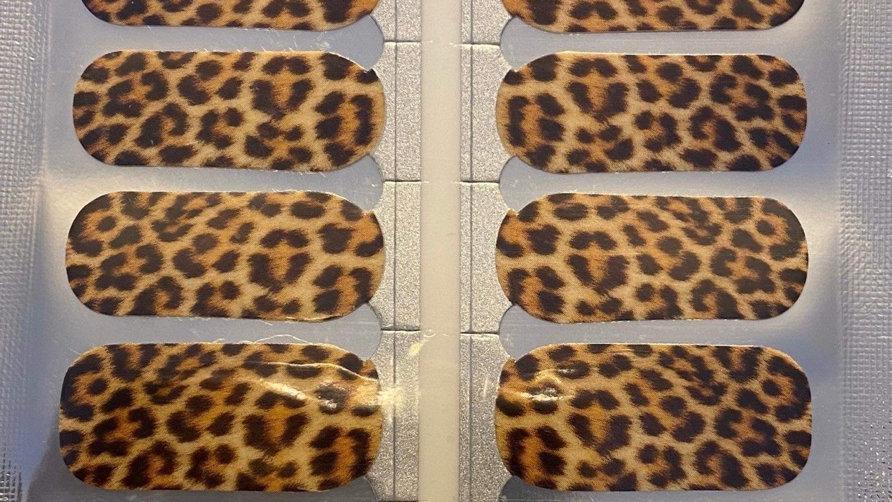 Cheerful cheetah