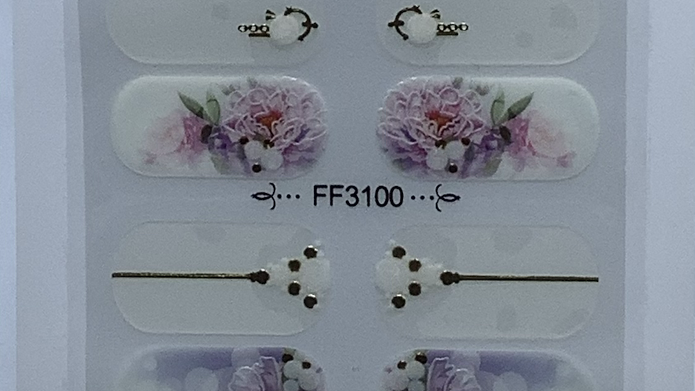 Ff3100