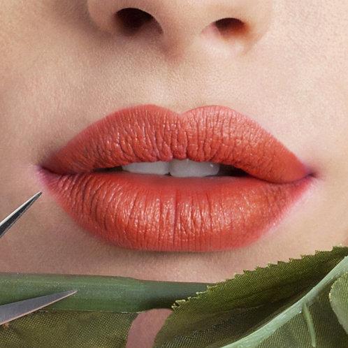 TANGO 06- Nouveau Cosmetics