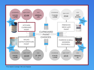 Infographic Paint Comparisions