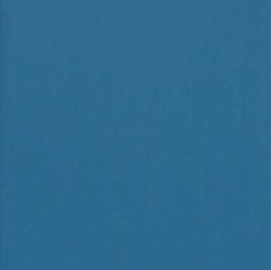 Hosta_Blue_Hue