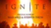 IGN Album Cover v1.01 ST 800px.jpg